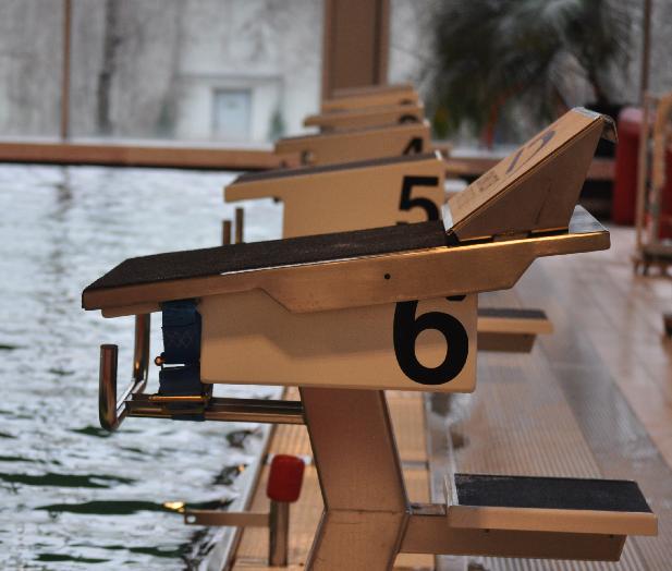 mobile Schwimm Startplatte Ansichten